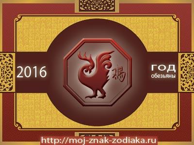 Петух - гороскоп восточный на 2016 год Обезьяны