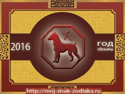Собака - гороскоп восточный на 2016 год Обезьяны