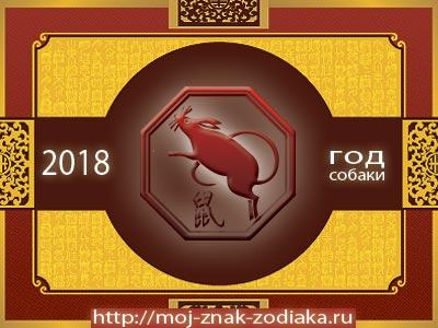 Крыса - гороскоп восточный на 2018 год Собаки