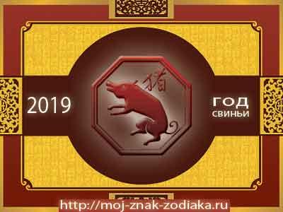 Свинья - гороскоп восточный на 2019 год Свиньи