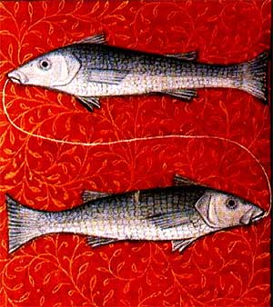 Знака зодиака рыбы характеристика